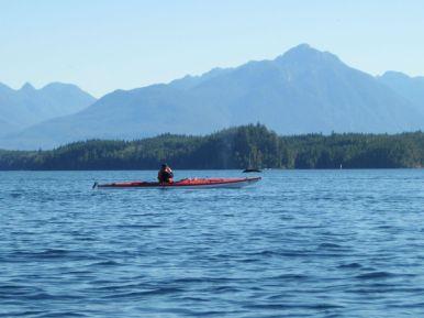 Buckelwal vor Vancouver Island taucht neben Seekajak auf