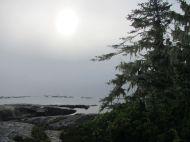 Inseln in Nebelstimmung vor Vancouver Island